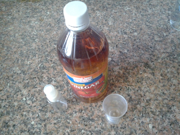 How to: DIY ACV face toner!