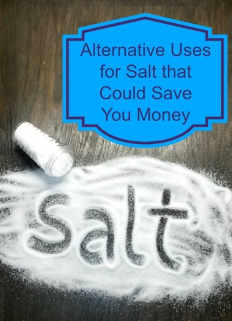 Alternative-uses-for-salt-that-could-save-you-money-4-740x1024
